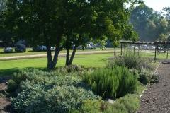 Kenyeres-kert fűszerkert