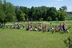 Óvodások szüretelnek - Kenyeres-kert